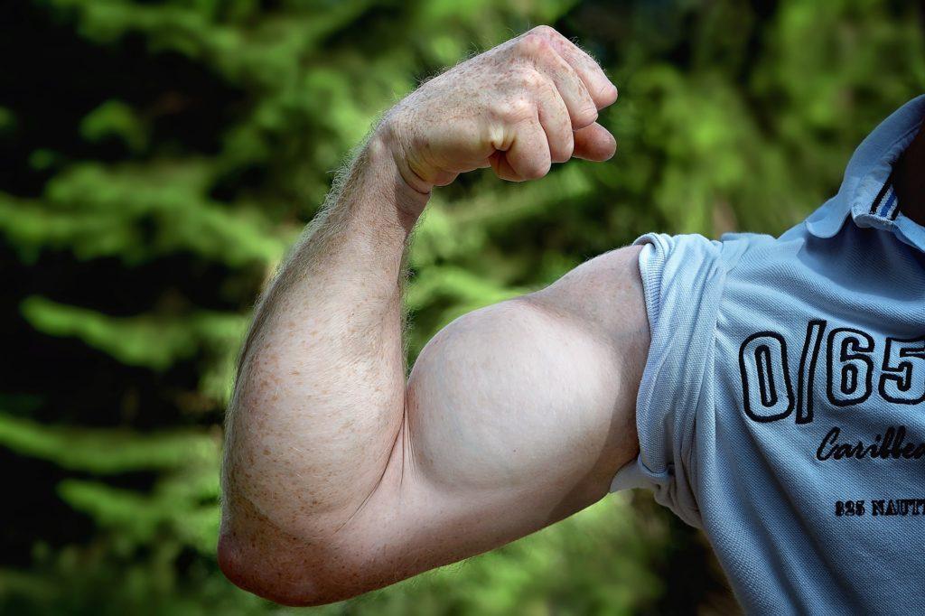 効率的な上腕二頭筋トレーニング